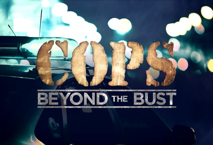 Cops Beyond the Bust